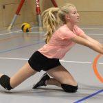 Volleyball Active I und II