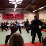 Shinson Hapkido Technik-Traning