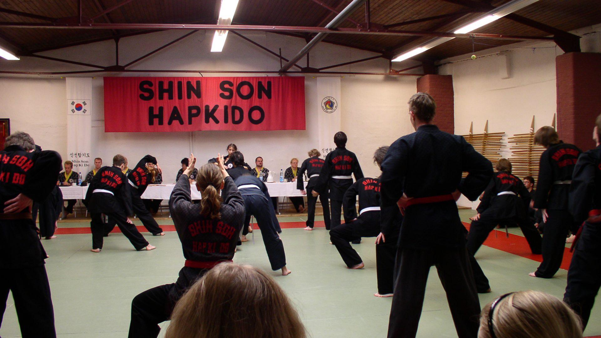 Shinson Hapkido Kids / Jugend